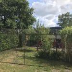 katzennetz im Garten - Beispiele